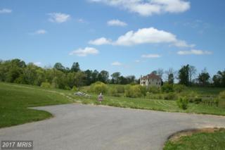 817 Walnut Hill Farm Drive, Davidsonville, MD 21035 (#AA9891275) :: Pearson Smith Realty