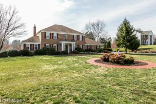 3518 Foxhall Drive, Davidsonville, MD 21035 (#AA9894708) :: LoCoMusings