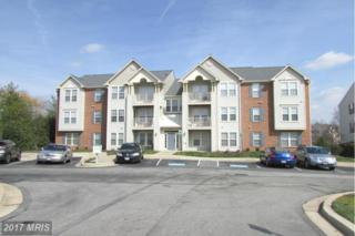 687 Winding Stream Way #202, Odenton, MD 21113 (#AA9895438) :: LoCoMusings