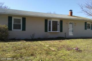 8400 Forest Drive, Pasadena, MD 21122 (#AA9897438) :: Pearson Smith Realty