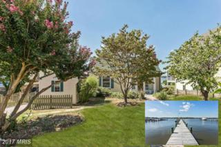 3720 Bay Drive, Edgewater, MD 21037 (#AA9900836) :: Pearson Smith Realty