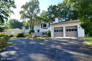 450 Maple Leaf Drive, Edgewater, MD 21037 (#AA9905300) :: Pearson Smith Realty
