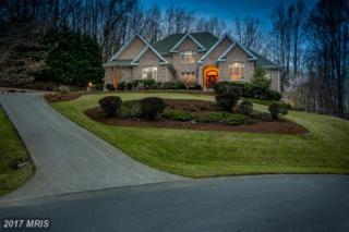 1602 Upton Scott Way, Crownsville, MD 21032 (#AA9905916) :: Pearson Smith Realty
