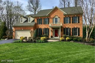 10 Faquier Court, Edgewater, MD 21037 (#AA9907585) :: Pearson Smith Realty
