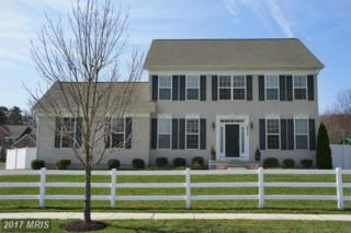 7412 Campbell Drive, Severn, MD 21144 (#AA9909470) :: Pearson Smith Realty