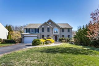 1183 Old County Road, Arnold, MD 21012 (#AA9912209) :: Pearson Smith Realty