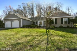631 Magothy View Drive, Arnold, MD 21012 (#AA9913265) :: Pearson Smith Realty