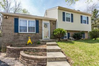 337 Ternwing Drive, Arnold, MD 21012 (#AA9916268) :: Pearson Smith Realty