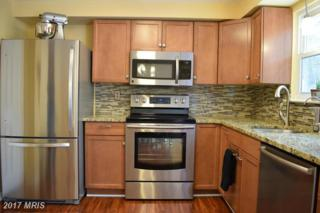 309 Wood Hollow Court, Annapolis, MD 21409 (#AA9917623) :: Pearson Smith Realty