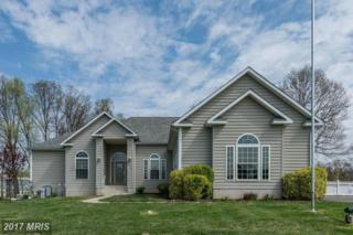 824 Andover Road, Linthicum, MD 21090 (#AA9917769) :: Pearson Smith Realty