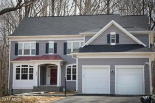 2010 Basil Hall Ct, Gambrills, MD 21054 (#AA9920888) :: Pearson Smith Realty