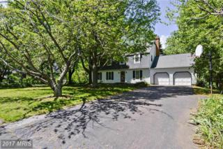 640 Magothy View Drive, Arnold, MD 21012 (#AA9925161) :: Pearson Smith Realty
