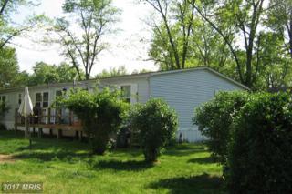 4747-K Flanders Lane, Harwood, MD 20776 (#AA9931682) :: Pearson Smith Realty