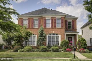 704 Hardwood Lane, Annapolis, MD 21401 (#AA9935262) :: Pearson Smith Realty