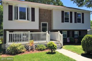 7805 Redwood Tree Road, Severn, MD 21144 (#AA9937889) :: Pearson Smith Realty
