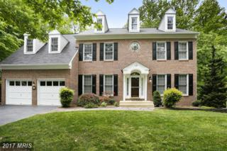 13 Dark Star Court, Edgewater, MD 21037 (#AA9938800) :: Pearson Smith Realty