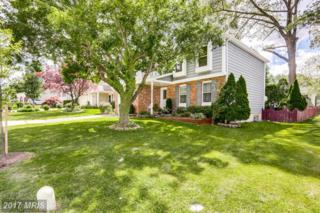 7902 Pepperbox Lane, Pasadena, MD 21122 (#AA9939050) :: Pearson Smith Realty