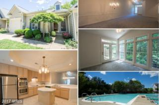 3707 Bayport Drive, Edgewater, MD 21037 (#AA9939722) :: Pearson Smith Realty