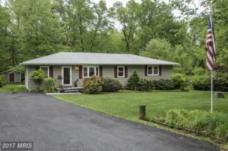 3651 North Carolina Avenue, Edgewater, MD 21037 (#AA9940346) :: Pearson Smith Realty