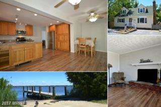 3701 Beach Drive Boulevard, Edgewater, MD 21037 (#AA9940822) :: Pearson Smith Realty