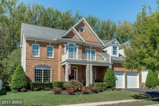 728 Pearson Point Place, Annapolis, MD 21401 (#AA9941419) :: Pearson Smith Realty