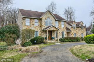 7 Poplar Point Road, Edgewater, MD 21037 (#AA9941616) :: Pearson Smith Realty