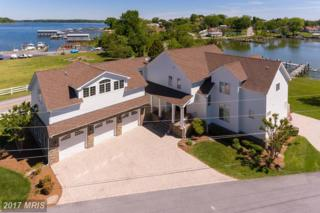 1145 Turkey Point Road, Edgewater, MD 21037 (#AA9942968) :: Pearson Smith Realty