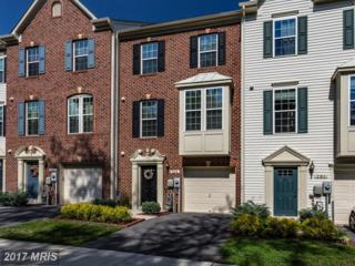 789 Grape Vine Loop, Baltimore, MD 21225 (#AA9943198) :: Pearson Smith Realty