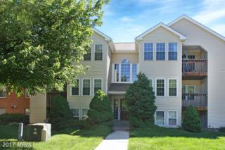 202 Juneberry Way 1C, Glen Burnie, MD 21061 (#AA9944659) :: Pearson Smith Realty
