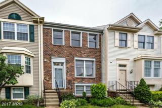 7142 Gardenview Court, Chestnut Hill Cove, MD 21226 (#AA9945538) :: Pearson Smith Realty