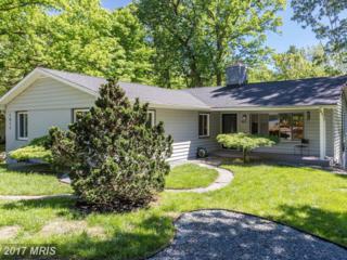 1871 Lindamoor Drive, Annapolis, MD 21401 (#AA9945628) :: Pearson Smith Realty