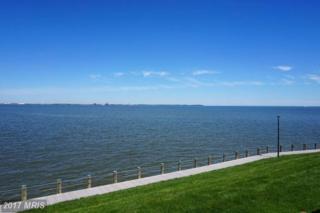 1335 Riverwood Way, Stoney Beach, MD 21226 (#AA9945824) :: Pearson Smith Realty