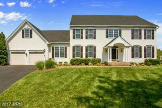 1343 Anglesey Drive, Davidsonville, MD 21035 (#AA9945969) :: Pearson Smith Realty
