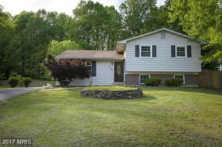 500 Knollwood Drive, Annapolis, MD 21401 (#AA9946137) :: Pearson Smith Realty