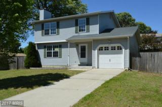 8026 Mansion House Crossing, Pasadena, MD 21122 (#AA9947150) :: Pearson Smith Realty