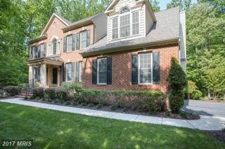 601 Indian Point Court, Davidsonville, MD 21035 (#AA9948622) :: Pearson Smith Realty