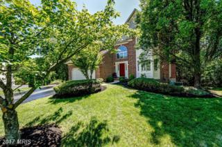 205 Blackhaw Court, Millersville, MD 21108 (#AA9949036) :: Pearson Smith Realty