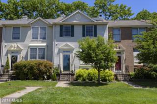 1338 Hollow Glen Court, Chestnut Hill Cove, MD 21226 (#AA9949159) :: Pearson Smith Realty