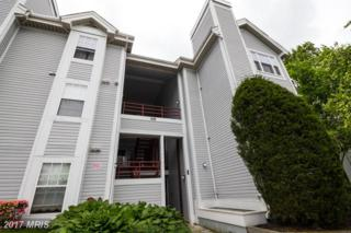 608 Rolling Hill Walk #303, Odenton, MD 21113 (#AA9952322) :: Pearson Smith Realty