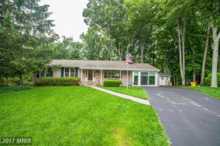 1494 Grandview Court, Arnold, MD 21012 (#AA9955325) :: ExecuHome Realty