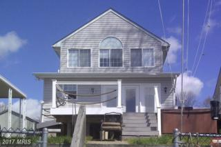 302 Greenland Beach Road, Pasadena, MD 21122 (#AA9957701) :: ExecuHome Realty