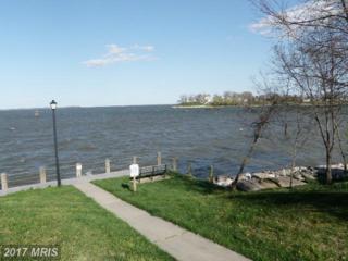 1412 Rivermist Court #160, Stoney Beach, MD 21226 (#AA9960100) :: Pearson Smith Realty