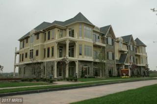220 Savannah Drive #102, Gettysburg, PA 17325 (#AD9840563) :: Pearson Smith Realty