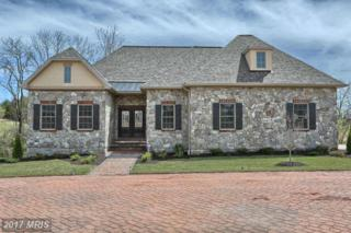 114 Brookside Lane, Gettysburg, PA 17325 (#AD9842539) :: Pearson Smith Realty