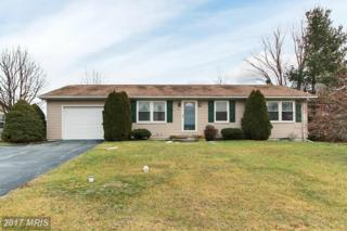 21 Bonniefield Circle, Gettysburg, PA 17325 (#AD9842653) :: Pearson Smith Realty