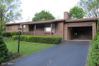 165 Windbriar Lane, Gettysburg, PA 17325 (#AD9936196) :: Pearson Smith Realty