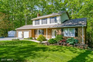 975 Middle Creek Road, Fairfield, PA 17320 (#AD9949046) :: Pearson Smith Realty