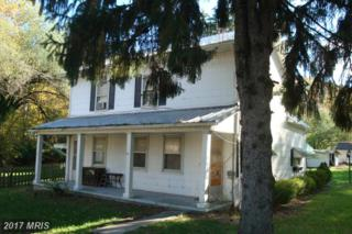 21814 National Pike, Flintstone, MD 21530 (#AL9856545) :: Pearson Smith Realty