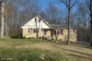 14705 Bourbon Street SW, Cumberland, MD 21502 (#AL9856768) :: Pearson Smith Realty