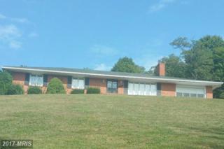10714 Mountainside Terrace SW, Frostburg, MD 21532 (#AL9890362) :: LoCoMusings